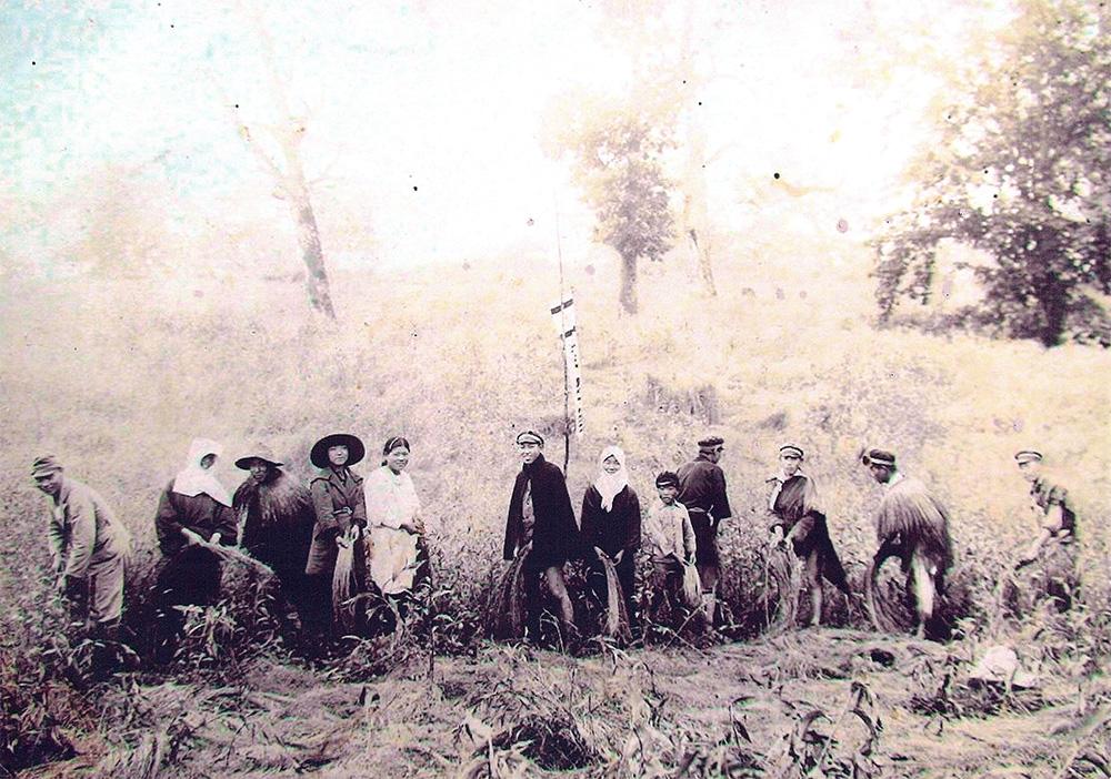 67年前 農学校による援農(亜麻収穫作業)