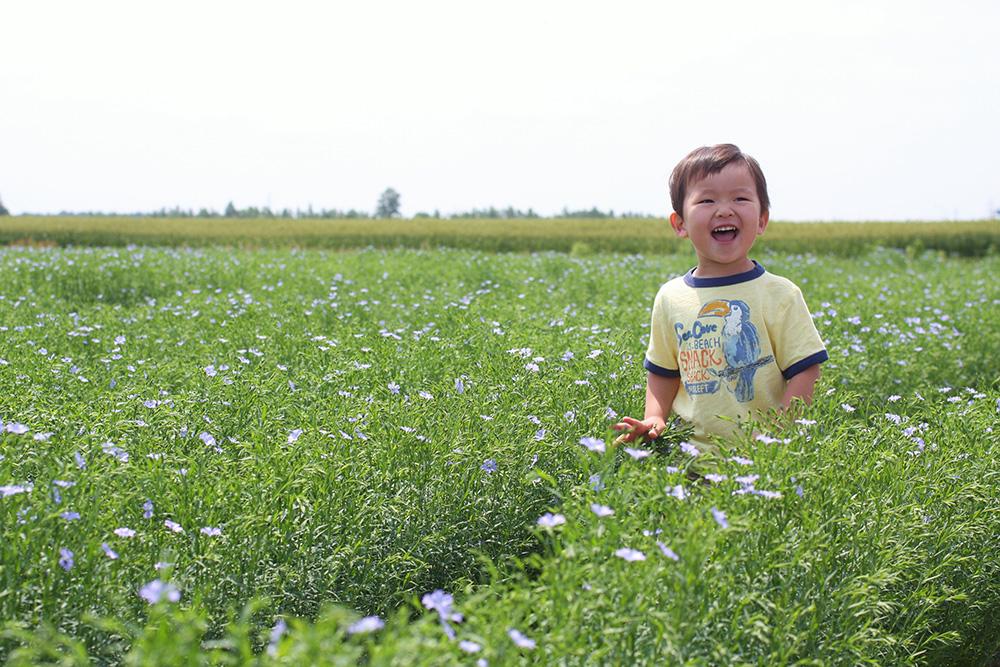 亜麻畑に咲く笑顔